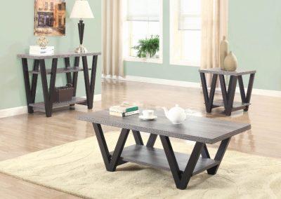 Modern Grey Wash Coffee Table Set