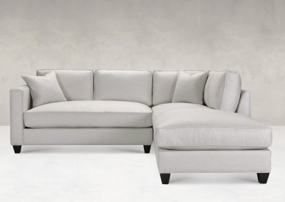 Younger Sadie Sectional Sofa